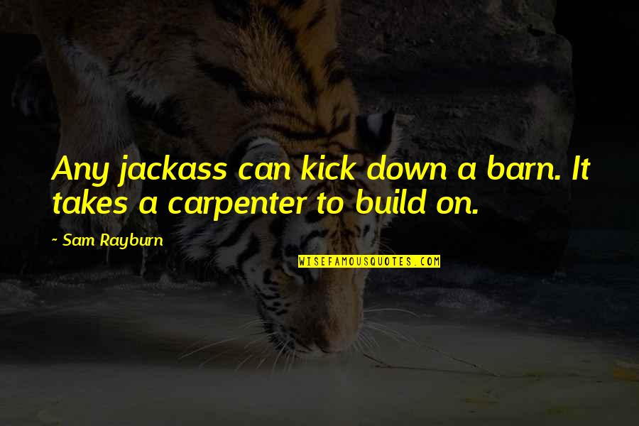 Passing Nclex Quotes By Sam Rayburn: Any jackass can kick down a barn. It