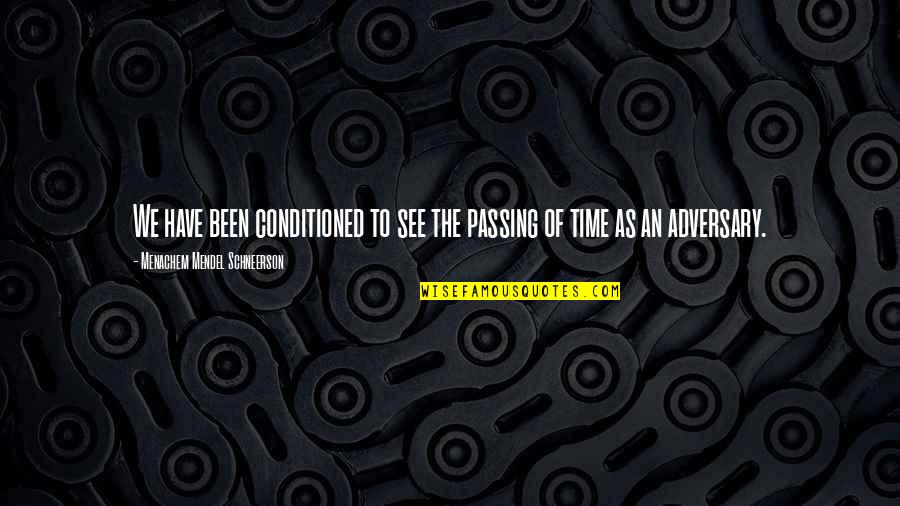Passing The Time Quotes By Menachem Mendel Schneerson: We have been conditioned to see the passing
