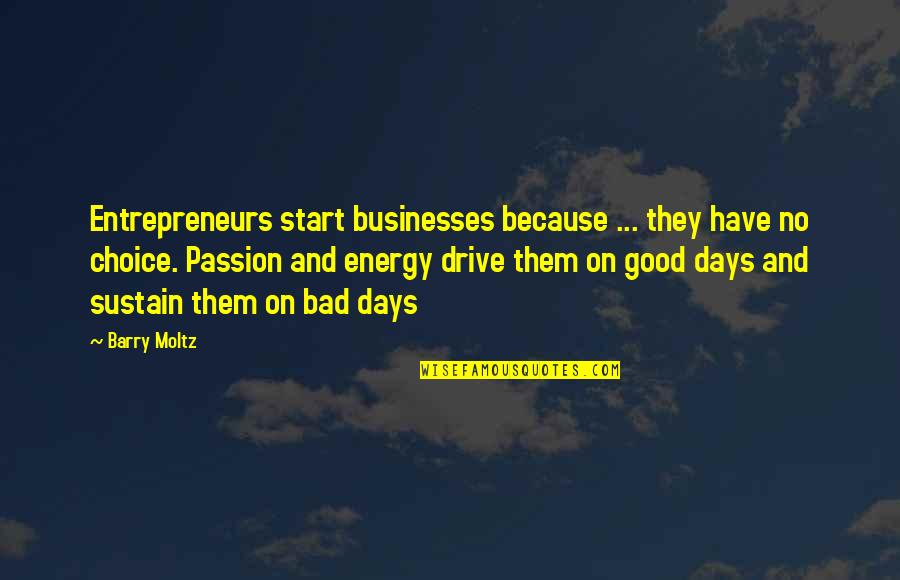 Passion And Drive Quotes By Barry Moltz: Entrepreneurs start businesses because ... they have no