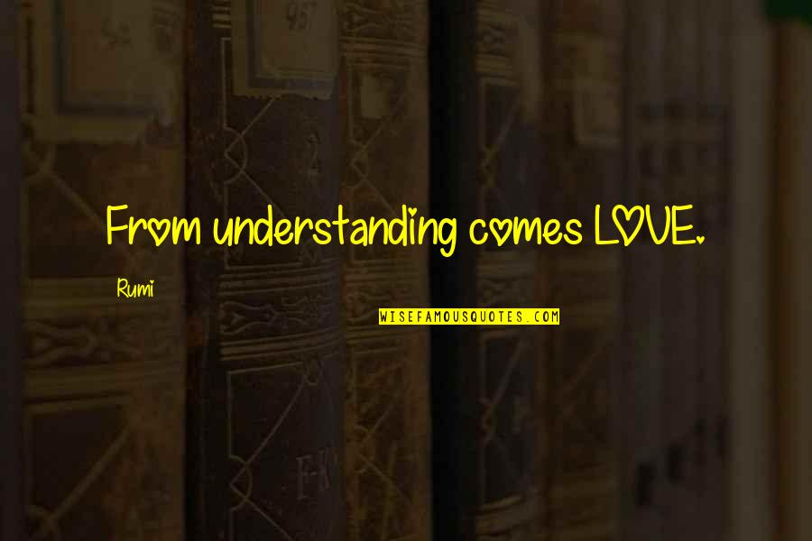 Past And Future Success Quotes By Rumi: From understanding comes LOVE.