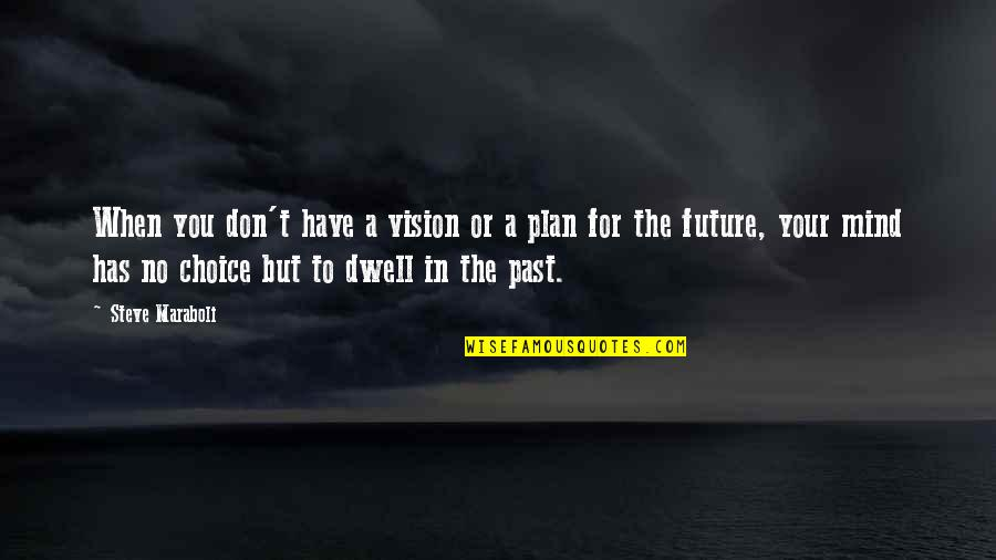 Past And Future Success Quotes By Steve Maraboli: When you don't have a vision or a