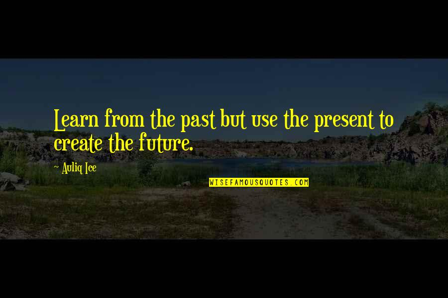 Past & Future Life Quotes By Auliq Ice: Learn from the past but use the present