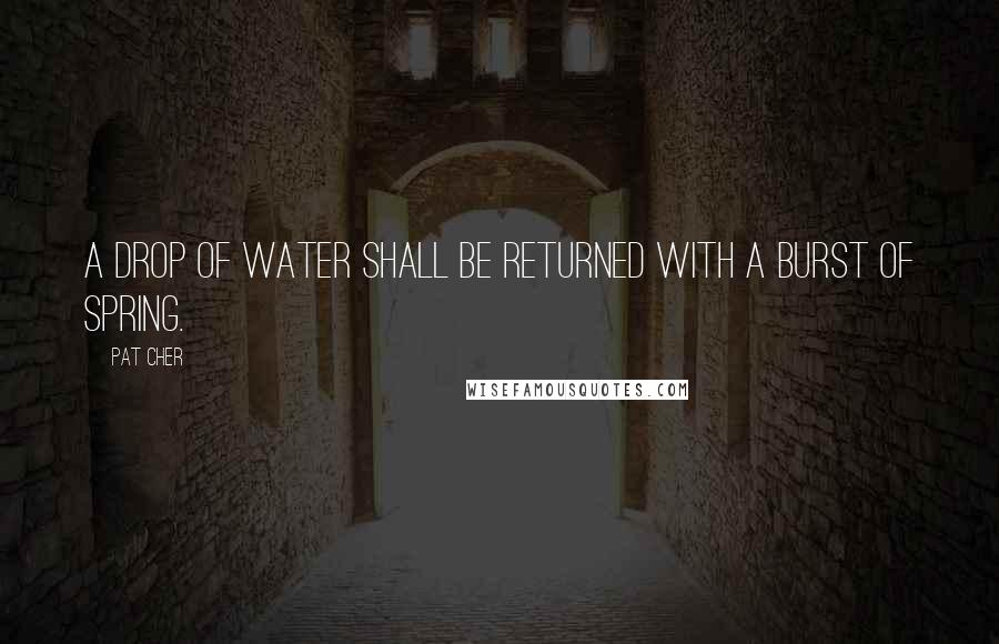 Pat Cher quotes: A drop of water shall be returned with a burst of spring.