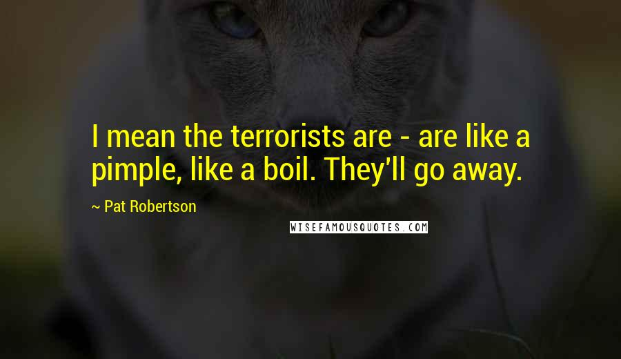 Pat Robertson quotes: I mean the terrorists are - are like a pimple, like a boil. They'll go away.
