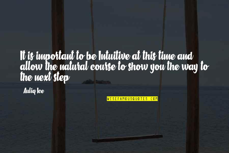 Patience And Time Quotes By Auliq Ice: It is important to be Intuitive at this