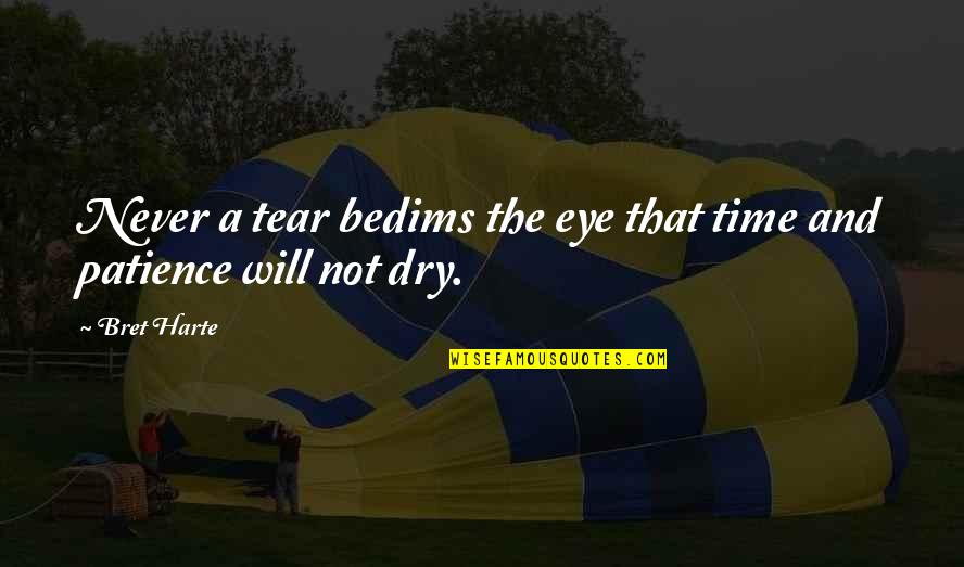Patience And Time Quotes By Bret Harte: Never a tear bedims the eye that time