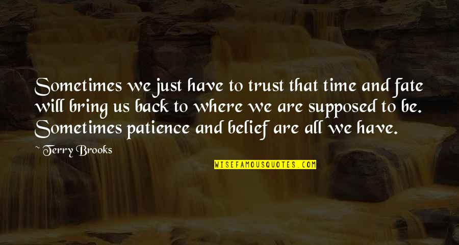 Patience And Time Quotes By Terry Brooks: Sometimes we just have to trust that time