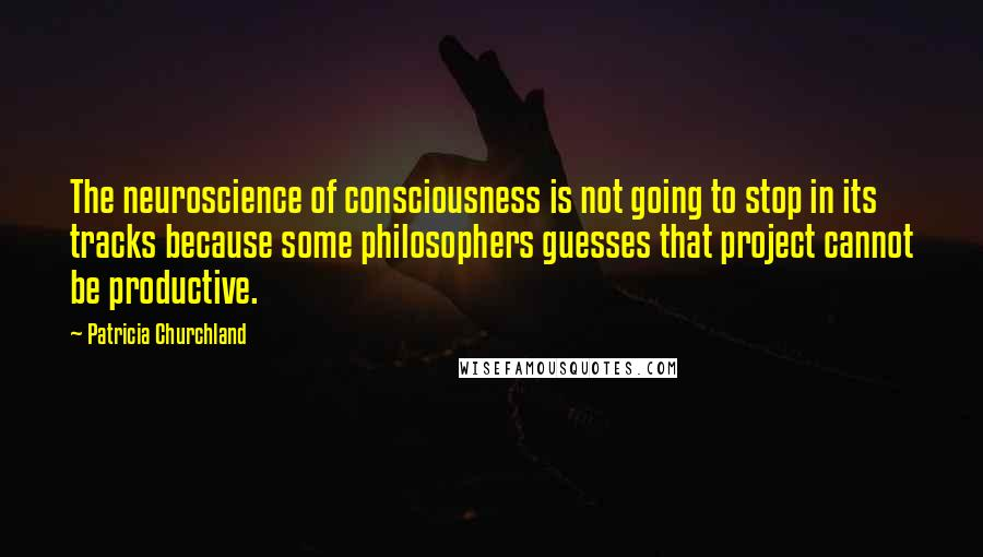 Patricia Churchland quotes: The neuroscience of consciousness is not going to stop in its tracks because some philosophers guesses that project cannot be productive.