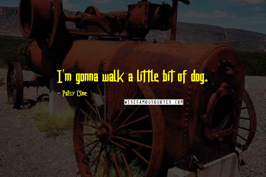 Patsy Cline quotes: I'm gonna walk a little bit of dog.