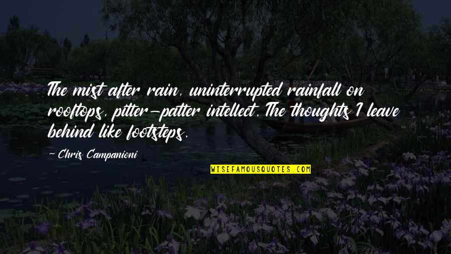 Patter Quotes By Chris Campanioni: The mist after rain, uninterrupted rainfall on rooftops,