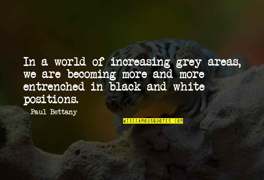 Paul Bettany Quotes By Paul Bettany: In a world of increasing grey areas, we