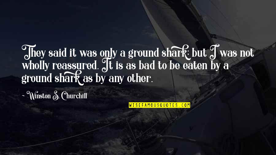 Paul Tsika Quotes By Winston S. Churchill: They said it was only a ground shark;