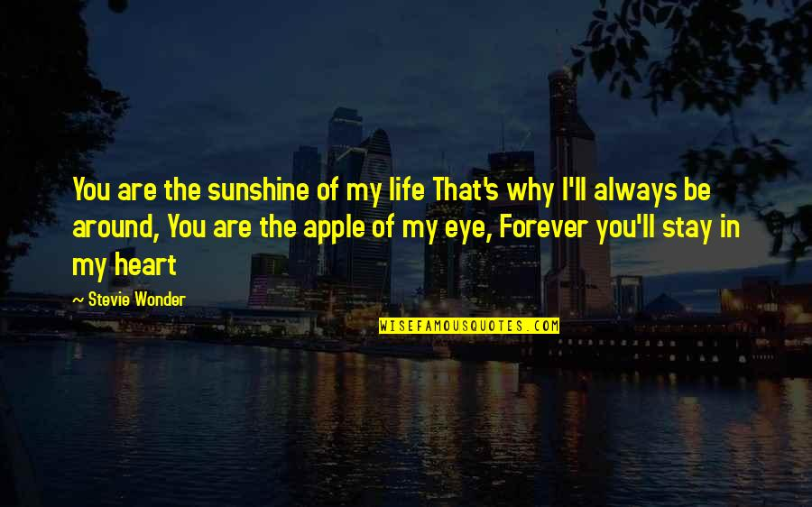 Paula Scher Helvetica Quotes By Stevie Wonder: You are the sunshine of my life That's
