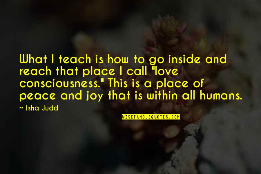 Peace And Joy Quotes By Isha Judd: What I teach is how to go inside