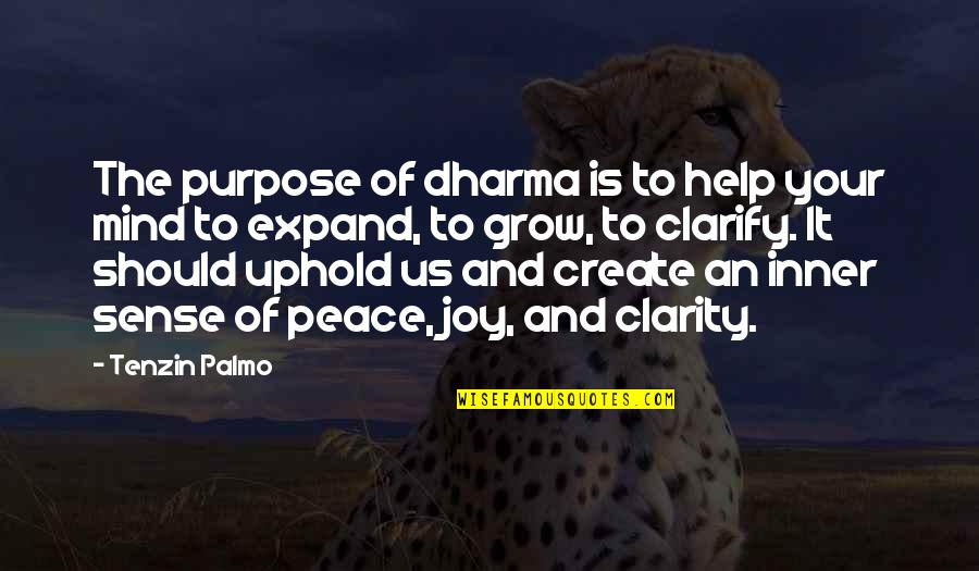 Peace And Joy Quotes By Tenzin Palmo: The purpose of dharma is to help your
