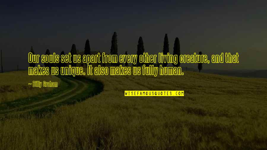 Peace Of Mind And Body Quotes By Billy Graham: Our souls set us apart from every other
