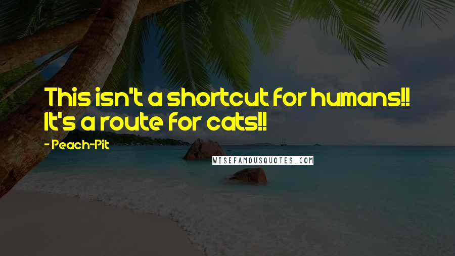 Peach-Pit quotes: This isn't a shortcut for humans!! It's a route for cats!!
