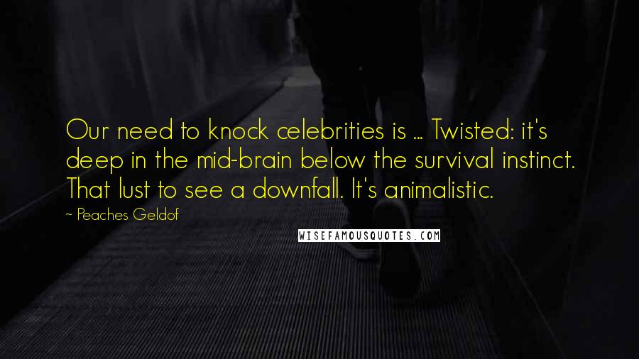 Peaches Geldof quotes: Our need to knock celebrities is ... Twisted: it's deep in the mid-brain below the survival instinct. That lust to see a downfall. It's animalistic.