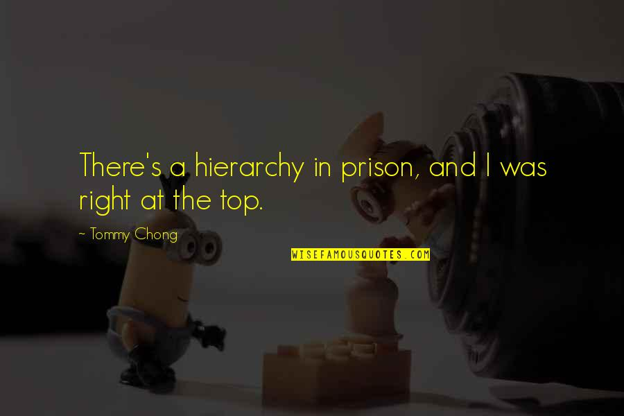 Pedicurist Quotes By Tommy Chong: There's a hierarchy in prison, and I was