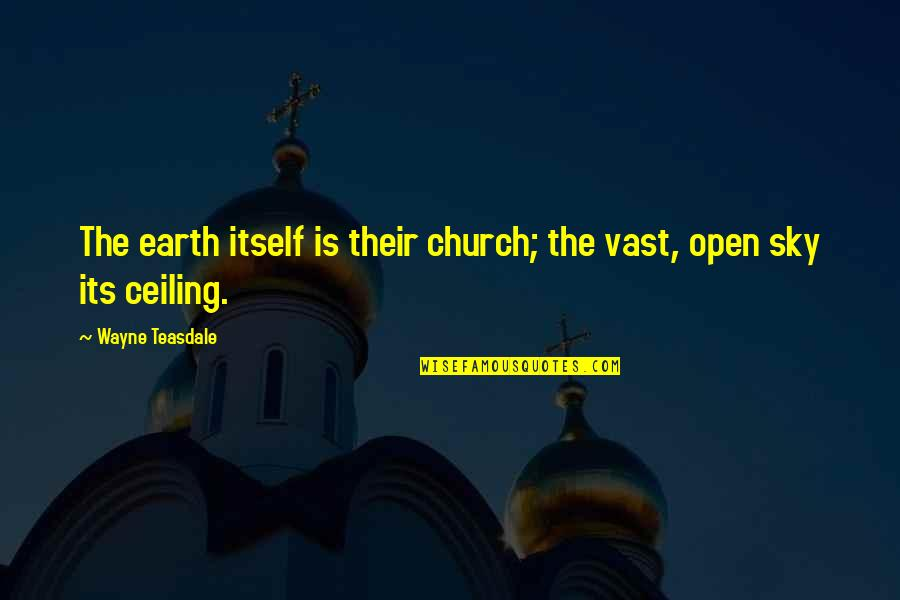 Pedicurist Quotes By Wayne Teasdale: The earth itself is their church; the vast,