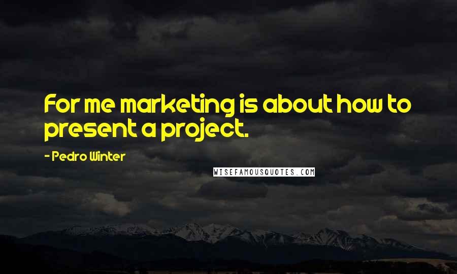 Pedro Winter quotes: For me marketing is about how to present a project.