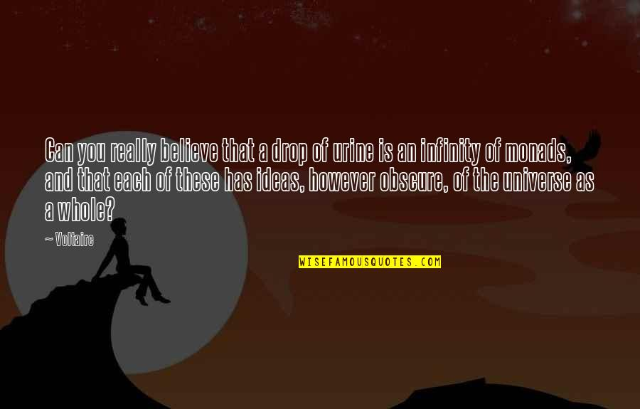 Pelvises Quotes By Voltaire: Can you really believe that a drop of