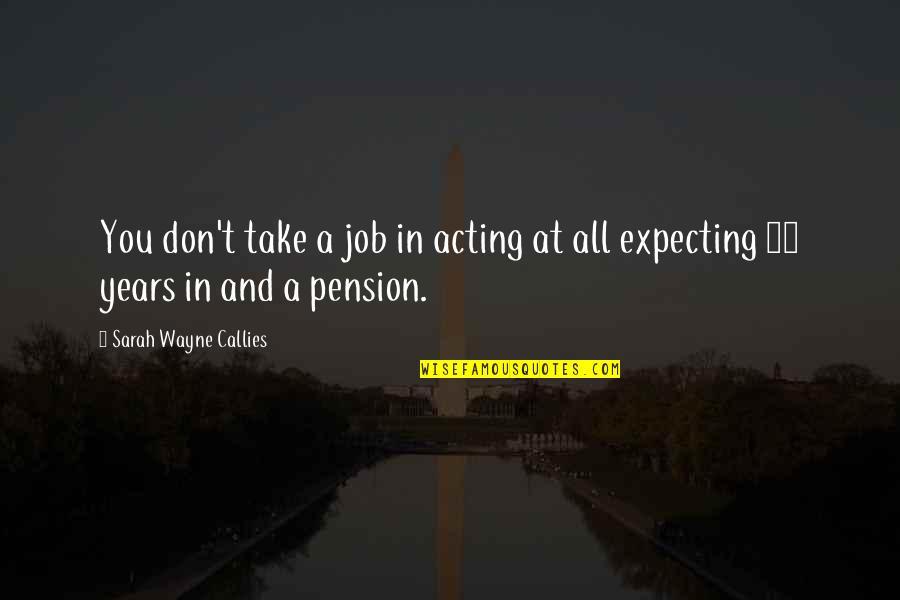 Pension Quotes By Sarah Wayne Callies: You don't take a job in acting at