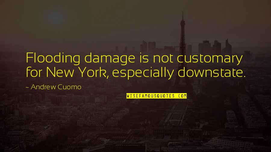 Pensive Quotes And Quotes By Andrew Cuomo: Flooding damage is not customary for New York,