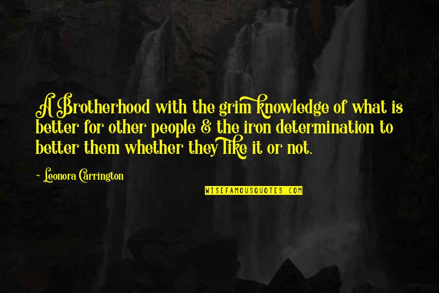 People's Opinions Quotes By Leonora Carrington: A Brotherhood with the grim knowledge of what