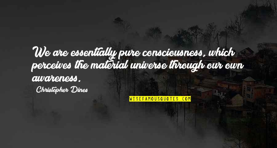 Perceives Quotes By Christopher Dines: We are essentially pure consciousness, which perceives the