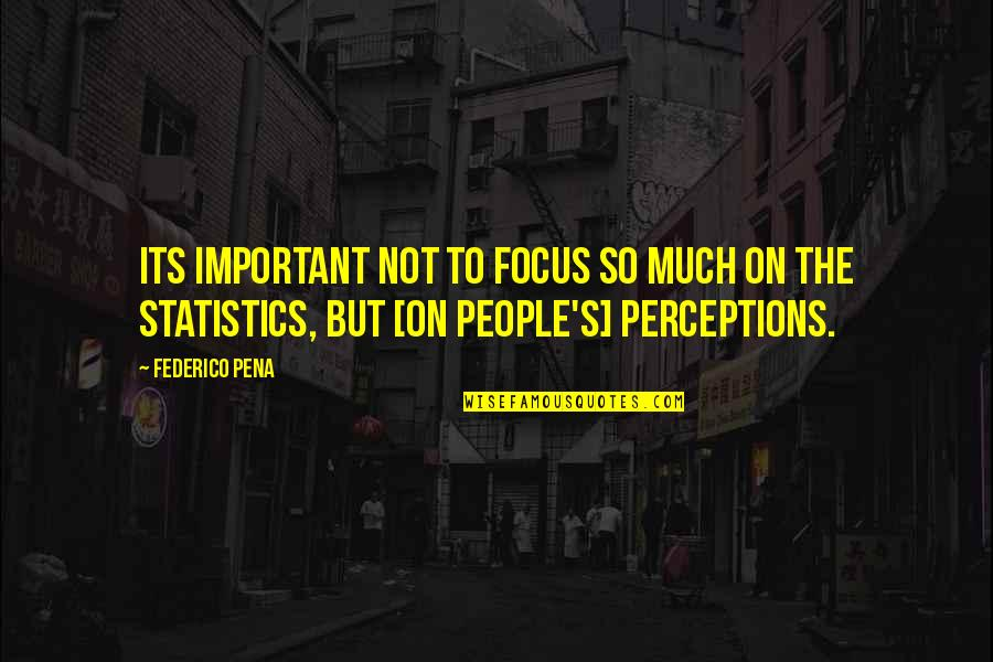 Perceptions Quotes By Federico Pena: Its important not to focus so much on