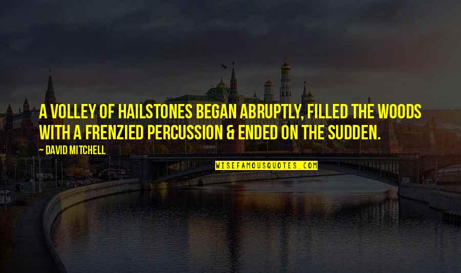 Percussion Quotes By David Mitchell: A volley of hailstones began abruptly, filled the