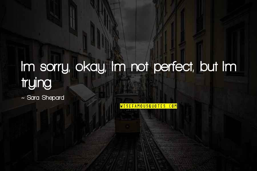 Perfect Sara Shepard Quotes By Sara Shepard: I'm sorry, okay, I'm not perfect, but I'm