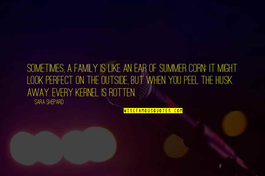 Perfect Sara Shepard Quotes By Sara Shepard: Sometimes, a family is like an ear of
