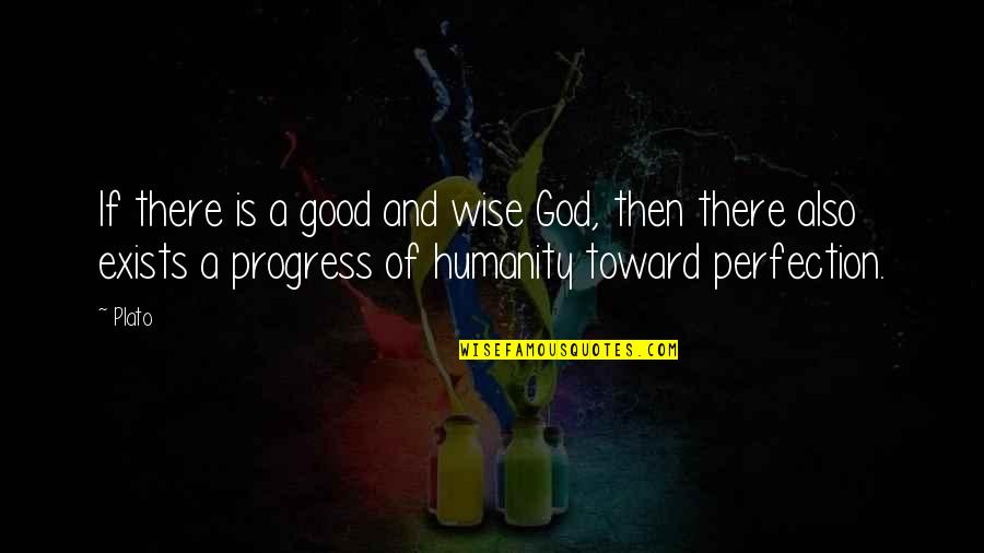 Perfection And God Quotes By Plato: If there is a good and wise God,
