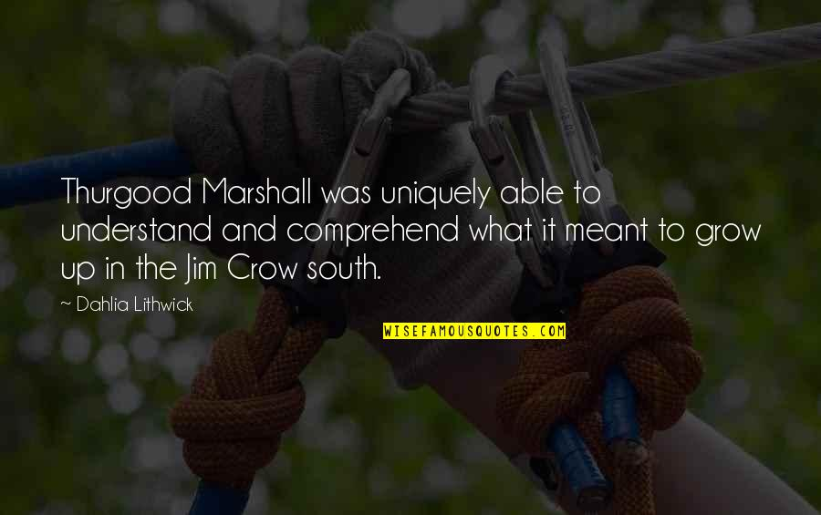 Performance Enhancing Quotes By Dahlia Lithwick: Thurgood Marshall was uniquely able to understand and