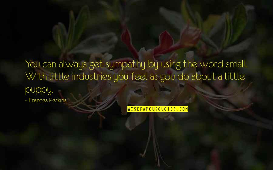 Perkins Quotes By Frances Perkins: You can always get sympathy by using the