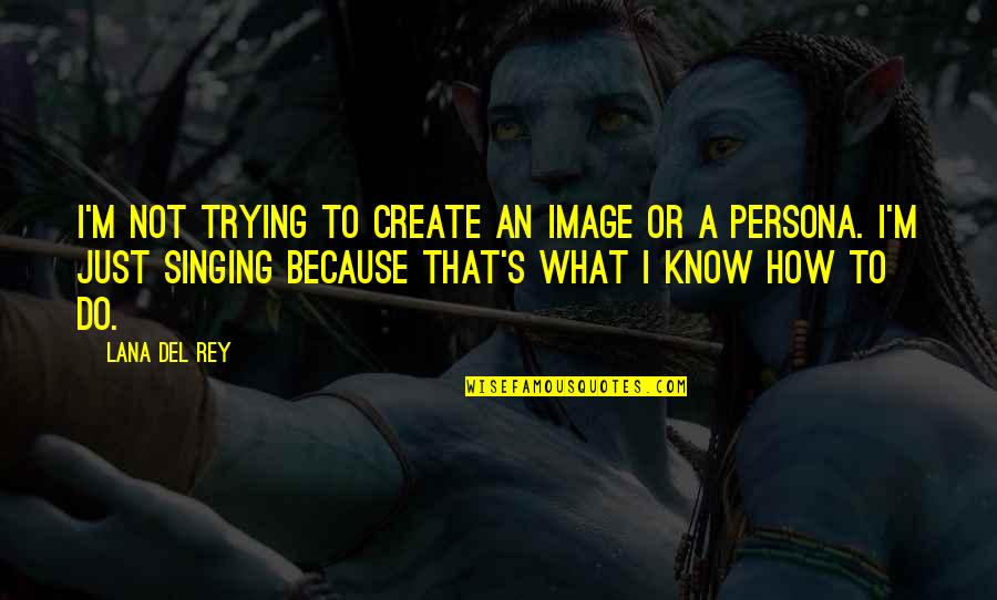 Persona Quotes By Lana Del Rey: I'm not trying to create an image or