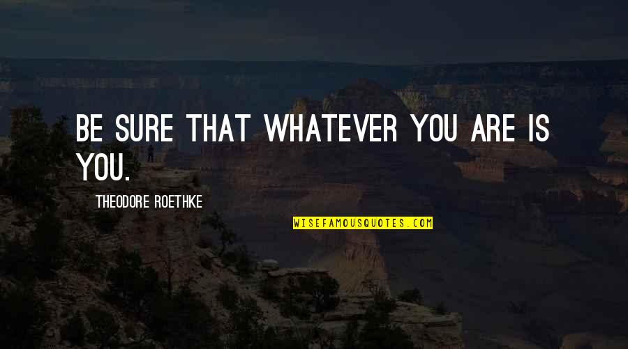 Persona Quotes By Theodore Roethke: Be sure that whatever you are is you.