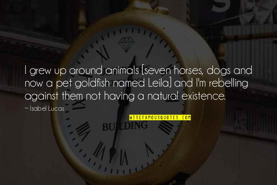 Pet Dogs Quotes By Isabel Lucas: I grew up around animals [seven horses, dogs