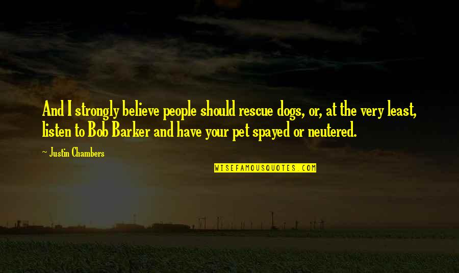 Pet Dogs Quotes By Justin Chambers: And I strongly believe people should rescue dogs,