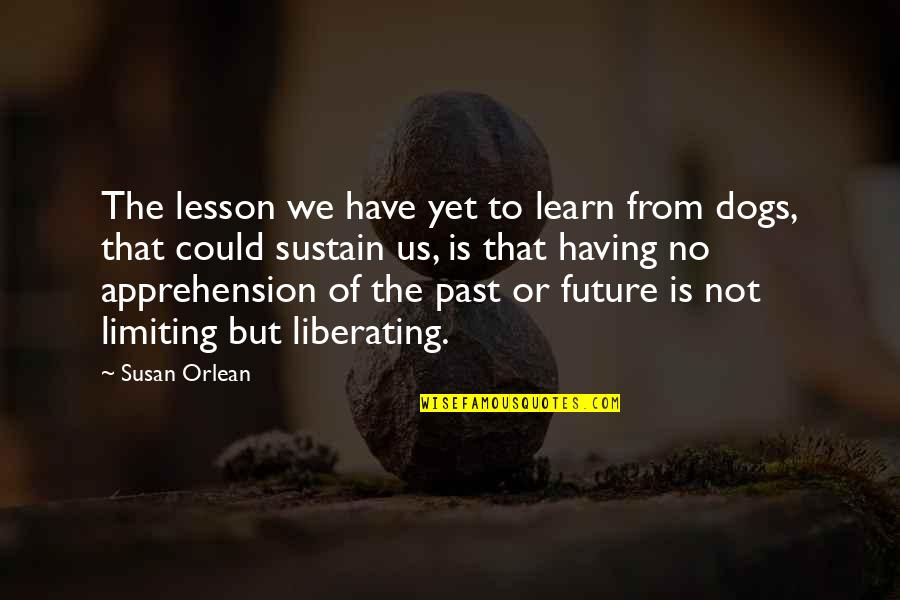 Pet Dogs Quotes By Susan Orlean: The lesson we have yet to learn from