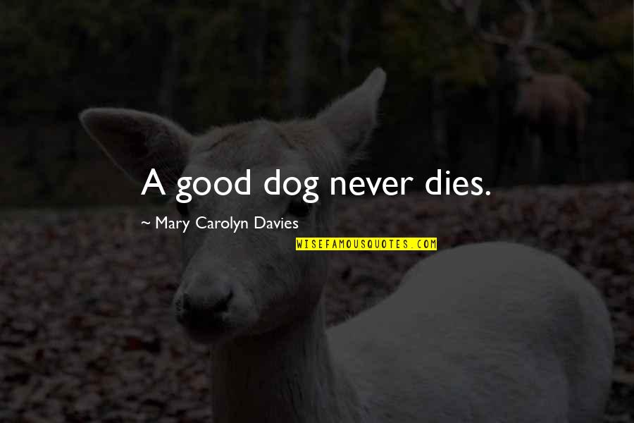 Pet Loss Quotes By Mary Carolyn Davies: A good dog never dies.