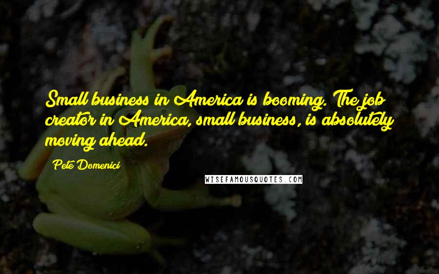 Pete Domenici quotes: Small business in America is booming. The job creator in America, small business, is absolutely moving ahead.