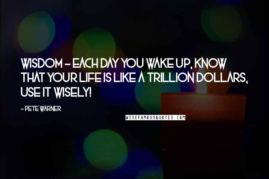 Pete Warner quotes: Wisdom - Each day you wake up, know that your life is like a trillion dollars, use it wisely!