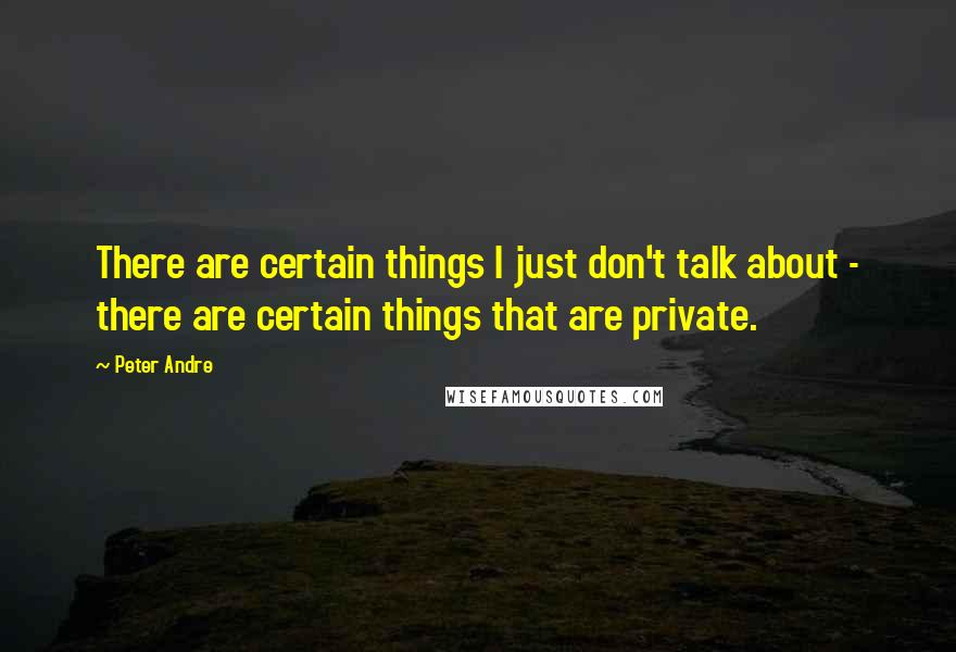 Peter Andre quotes: There are certain things I just don't talk about - there are certain things that are private.