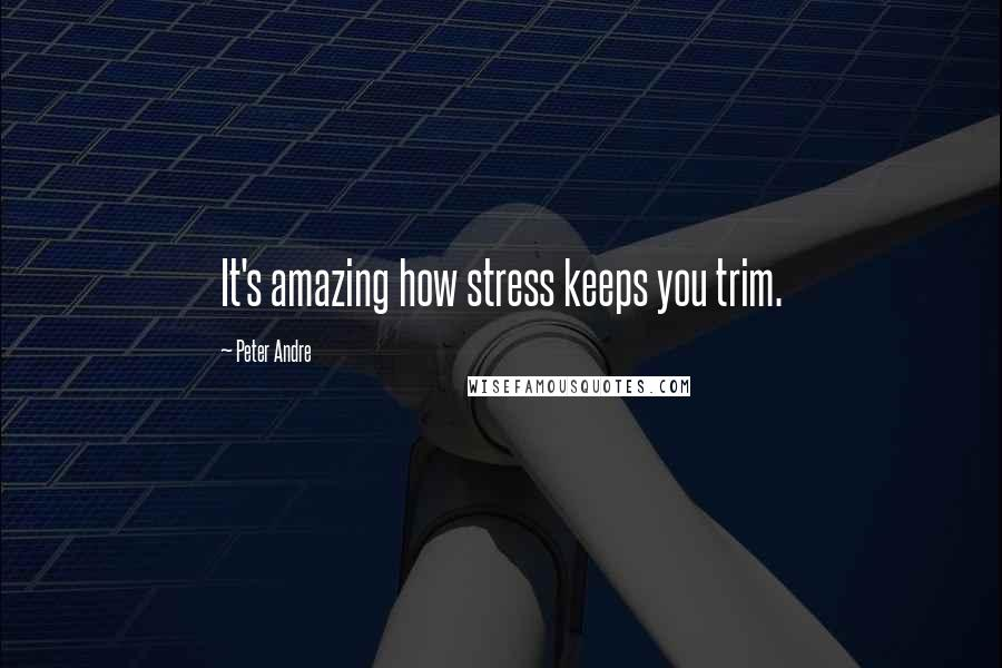 Peter Andre quotes: It's amazing how stress keeps you trim.