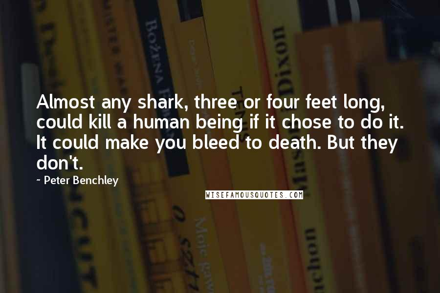 Peter Benchley quotes: Almost any shark, three or four feet long, could kill a human being if it chose to do it. It could make you bleed to death. But they don't.