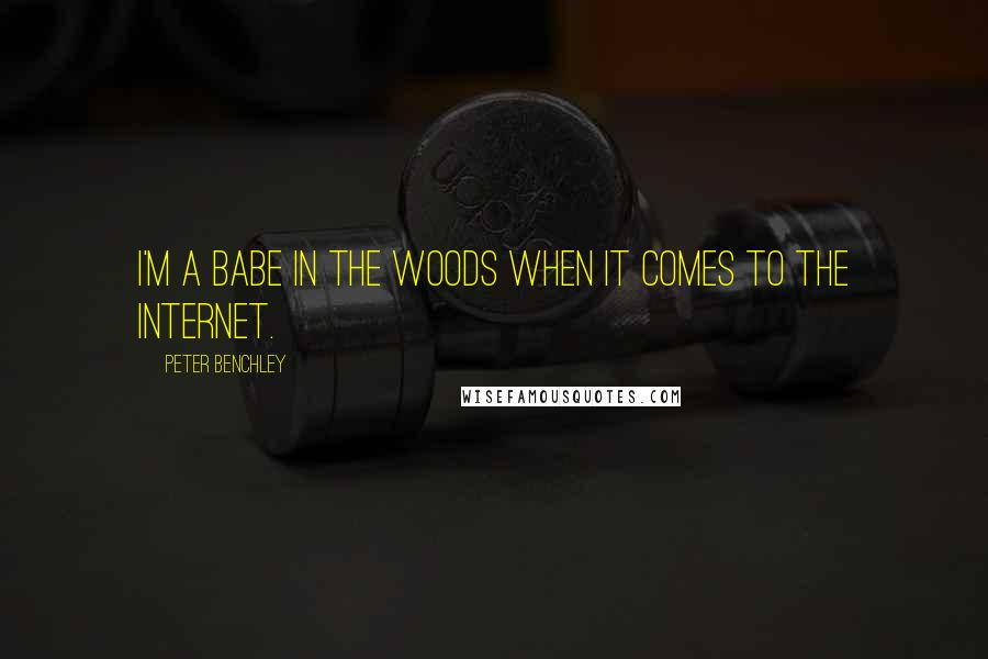 Peter Benchley quotes: I'm a babe in the woods when it comes to the Internet.