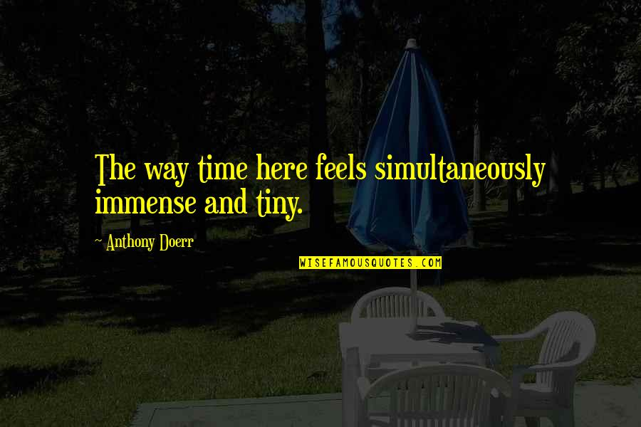 Peter Blake Pop Art Quotes By Anthony Doerr: The way time here feels simultaneously immense and